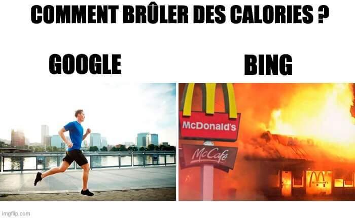 meme seo google contre bing